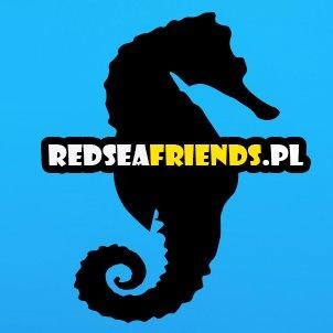 RedSeaFriends.pl - nowy portal